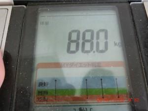 ライザップ28日目の体重の画像